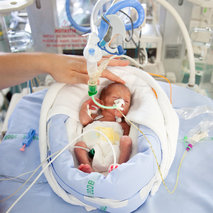 Support for research on the respiratory illnesses of preterm infants