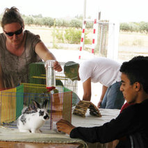 Expansion and renovation of the facilities of the Ferme Thérapeutique pour Handicapés in Tunisia