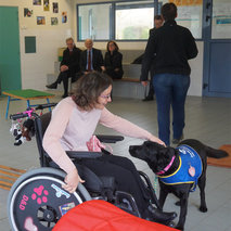Support to an assistance dog training center for disabled people