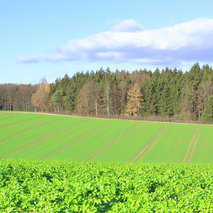 Study of greenhouse gas emissions from soils in Germany