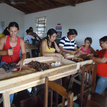 New commercial opportunities for the fruit production of farming families in Brazil