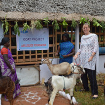 Training in livestock farming in India