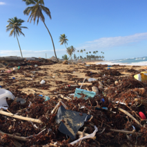 What do we know about atmospheric plastic pollution?